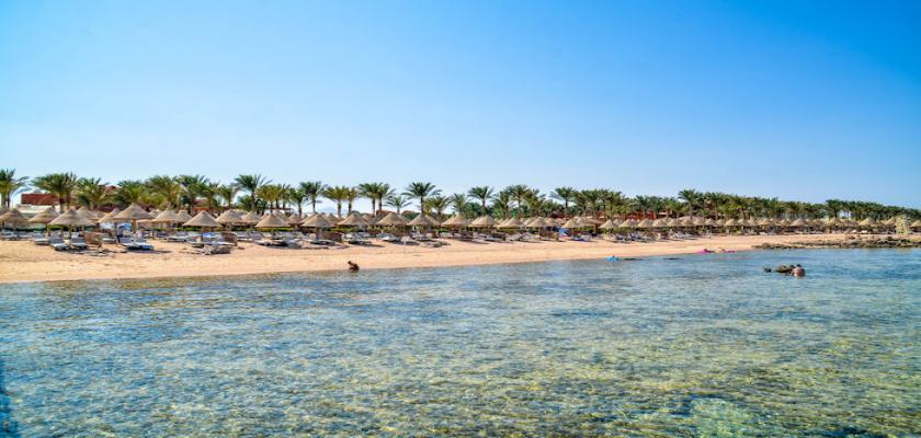 Egitto Mar Rosso, Sharm el Sheikh - Grand Plaza Resort 0 Small