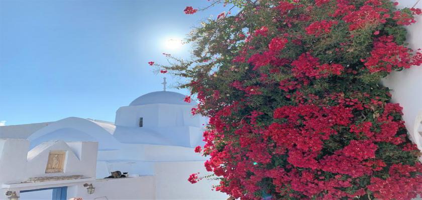 Grecia, Amorgos - Vigla 3
