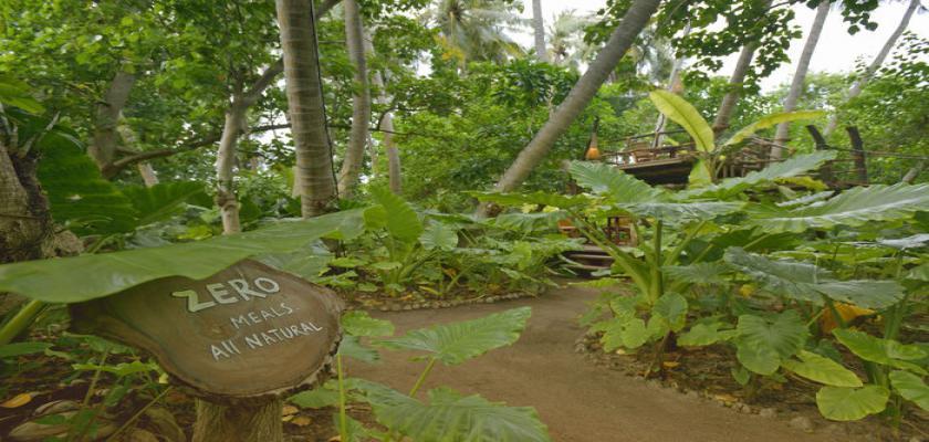 Maldive, Male - Sun Island Resort & Spa 2