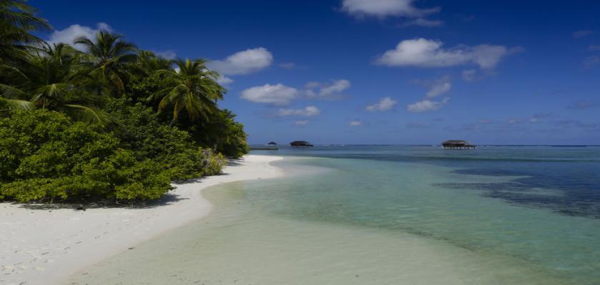Maldive, Male - Medhufushi Island Resort 4