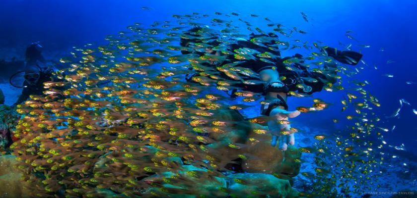 Maldive, Male - Sandies Bathala 3