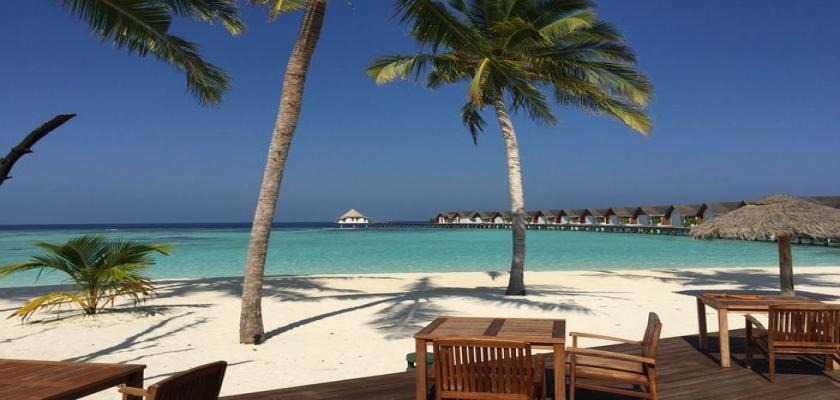 Maldive, Male - Furaveri Island Resort & Spa 4