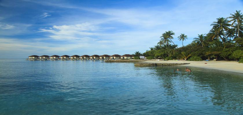Maldive, Male - Bravo Alimatha' 1