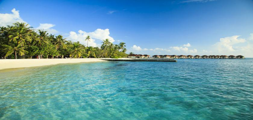 Maldive, Male - Bravo Alimatha' 4