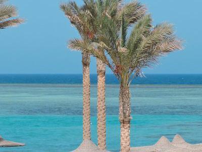 Egitto Mar Rosso, Marsa Alam - Elphistone Beach Resort