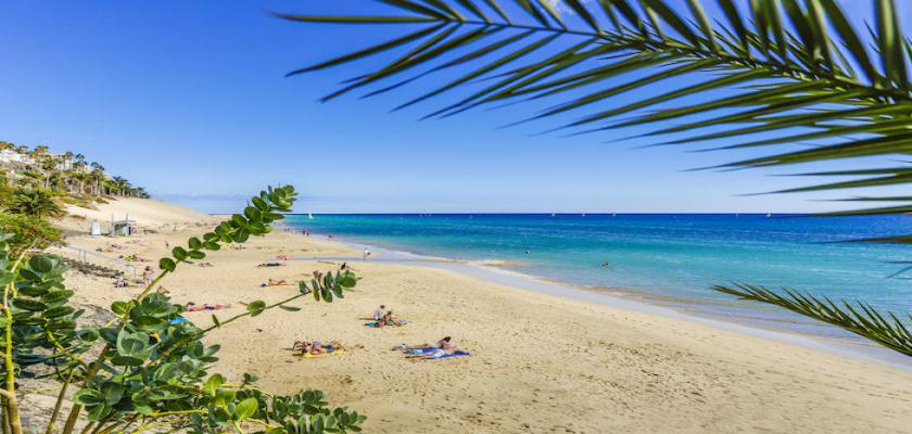 Spagna - Canarie, Fuerteventura - Bravo Fuerteventura 1