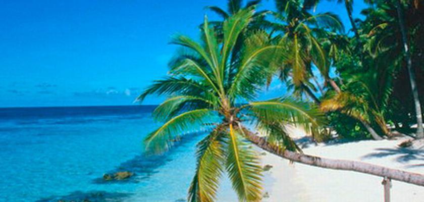 Repubblica Dominicana, Punta Cana - Hotel Costa Las Ballenas 5
