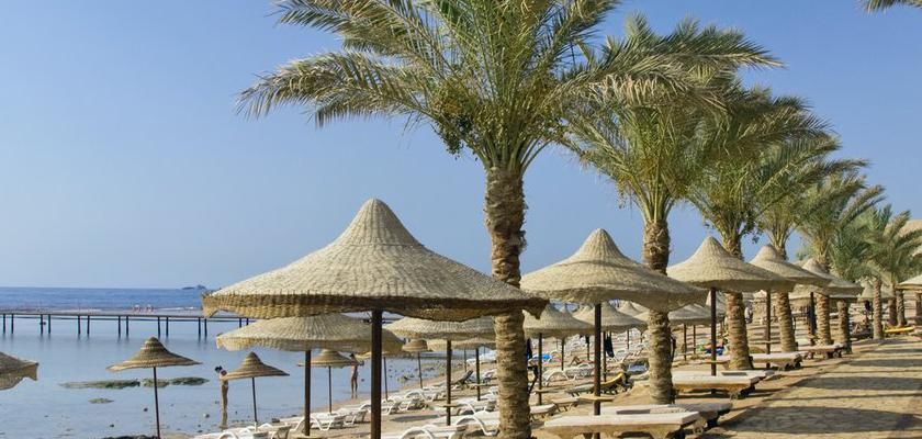 Egitto Mar Rosso, Sharm el Sheikh - Tamra Beach 3