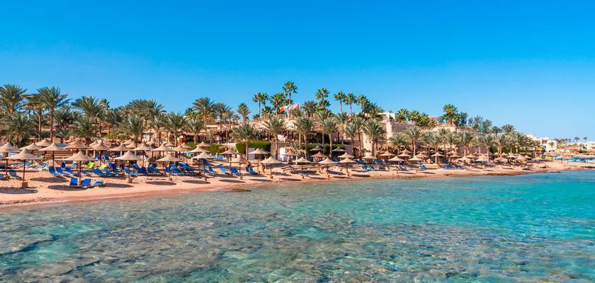 Egitto Mar Rosso, Sharm el Sheikh - Tamra Beach 5