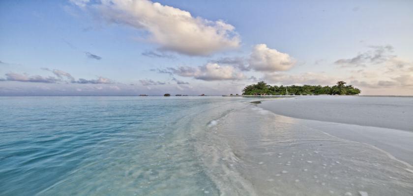 Maldive, Male - Seaclub Maayafushi 1