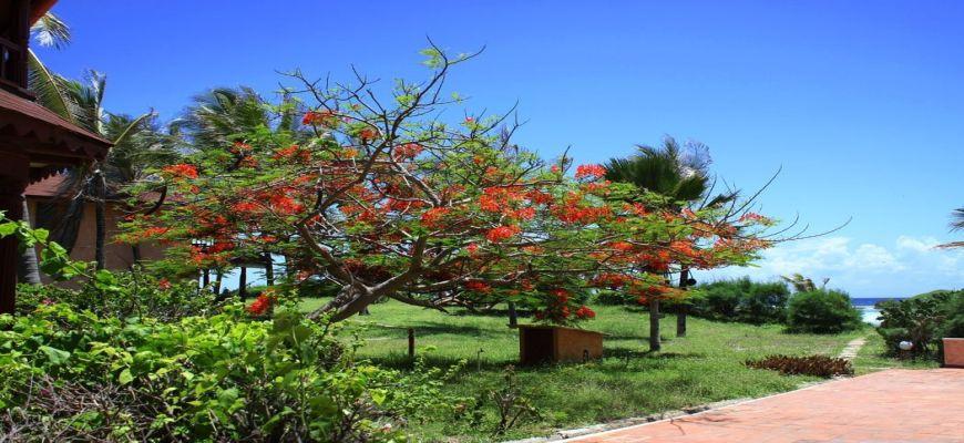 Kenya, Watamu - Veraclub Crystal Bay 7