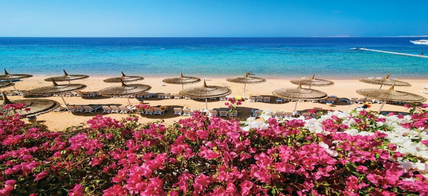Egitto Mar Rosso, Sharm el Sheikh - Veraclub Reef Oasis Beach Resort 22