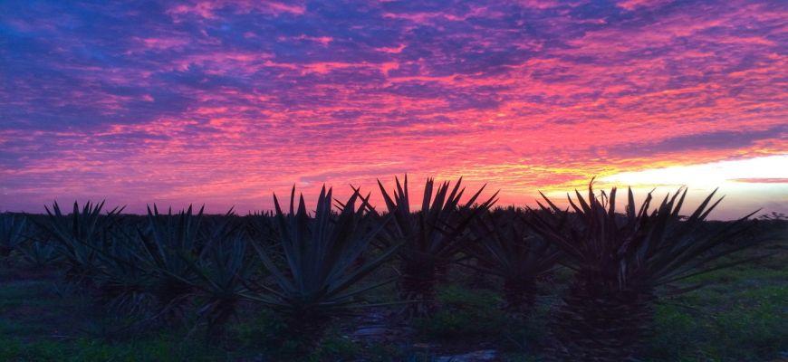 Messico, Riviera Maya - Tour Yucatan + Veraclub Royal Tulum 0