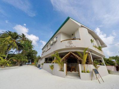 Maldive, Male - Dhiffushi Inn
