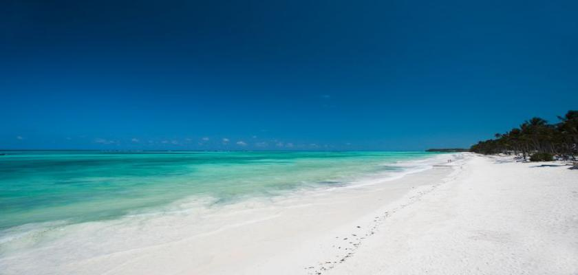 Zanzibar, Zanzibar - Karafuu Beach Resort & Spa 0