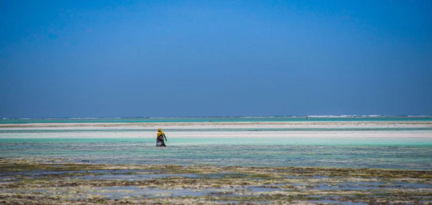 Zanzibar, Zanzibar - Warere Beach Hotel 5