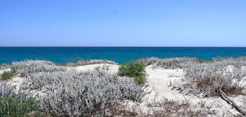 Italia, Calabria - Seaclub Calalandrusa Beach 4