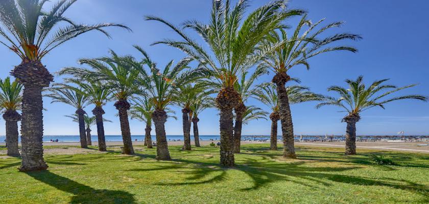 Spagna Costa, Costa del sol - Sol Don Pedro 1