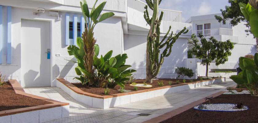 Spagna - Canarie, Tenerife - Checkin Atlandida 4