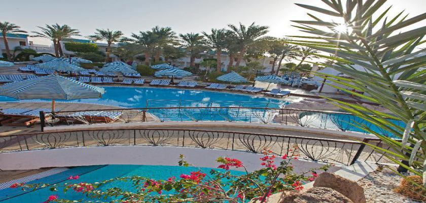 Egitto Mar Rosso, Sharm el Sheikh - Sultan Gardens 3