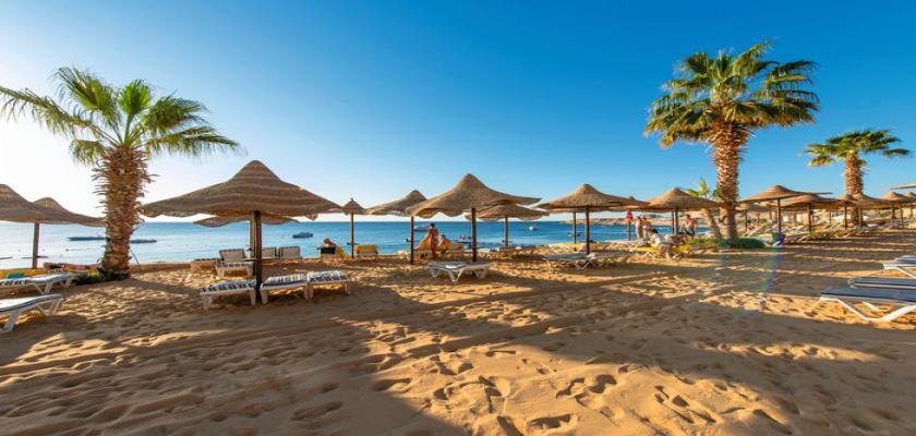 Egitto Mar Rosso, Sharm el Sheikh - Concorde El Salam Resort 2