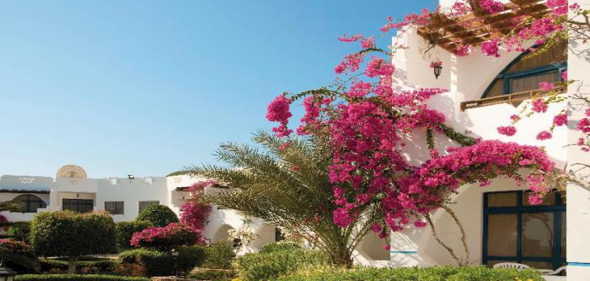 Egitto Mar Rosso, Marsa Alam - Three Corners Equinox Beach 3